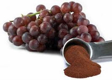 GMP Standard Grape Seed Extract OPC95%/grape seed extract capsule/grape seed extract powder