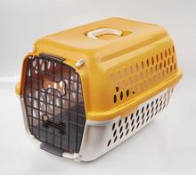 New Design dog portable cage plastic kennel