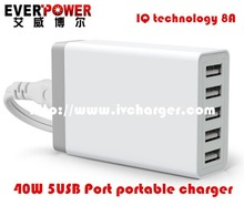 Promotion EVERPOWER charge laptop battery micro usb battery charger