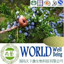 Juniper berry extract/4:1 10:1 20:1 /Diuretic