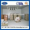 Industrial congelación / frutas de almacenamiento en frío / profunda en frío sala