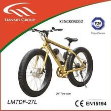 Electric bikes LMTDF-27L mountain style with whitebait motor