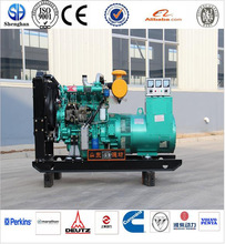 hot sales!!! Ricardo electric generator picture