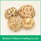 Autumn Grown Dried White Flower Shiitake Mushroom