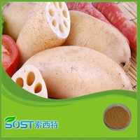 Hot Selling High Quality Lotus Root Starch