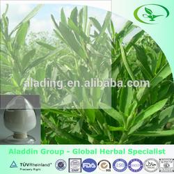 100% Natural Rebaudioside A (Reb A) 97% HPLC Steviol Glycosides 90% 95%