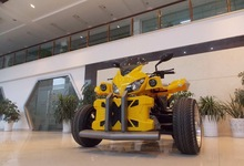2015 road legal EEC ATV QUAD with individual design, 250cc ATV,2 seats