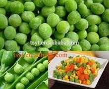 2015 new year bulk wholesale Frozen iqf green pea peas for USA Canada