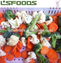 Wholesale Frozen mixed vegetables bulk frozen vegetables