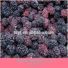 IQF frozen blackberry fruit for sale