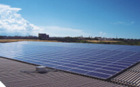 low price 250w solar module for Australia