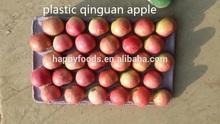 Fresh apple names all fruits fruit and vegetables fresh apple