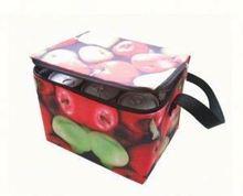 Customized aluminum foil lunch cooler bag