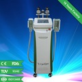 Venda quente cryolipolysis máquina em 2014/cryolipolysis máquina para corpo edifício/cryolipolysis gordura máquina de congelamento para venda