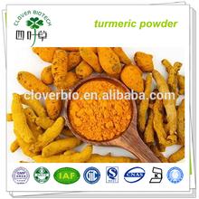 95% Curcumin organic turmeric Curcuma longa Extract powder
