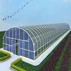 China grade A uv greenhouse roofing plastic material