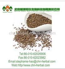 Jue Ming Zi,Cassia tora Seeds Tea,Chinese herb