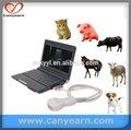 macchina ad ultrasuoni portatile la cina ha utilizzato attrezzature veterinarie
