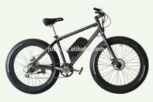 Fat bike Beach Cruiser