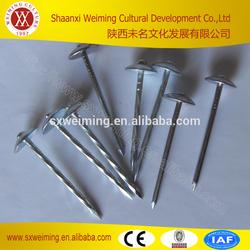 BWG9-13 umbrella head plain shank roofing nails