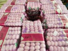 white garlic (2014 new crop)