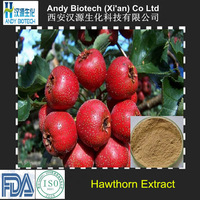 20% Total Flavones Natural Hawthorn Berry Extract Powder