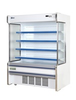 Commerical Beverage Display Showcase Chiller / Curtain Chiller