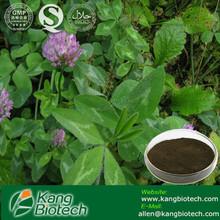 Red Clover Extract 8% 10% 20% 40% Isoflavones