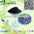Extracto de arándano pterostilbene1%- 20%, arándano extracto de hoja de pterostilbene antioxidante