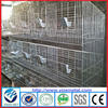 meat rabbit cages for sale/cheap rabbit cage manufacturer (manufacturer)