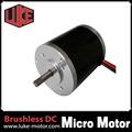 Micro Motor Motor / elétrica para bomba de água