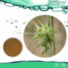 GMP Manufacturer Pure Natural 40% Saponins Tribulus Terrestris Extract Powder