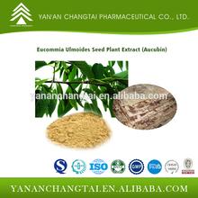 Eucommia Ulmoides Seed Plant Extract (Aucubin20%,25%,30%)