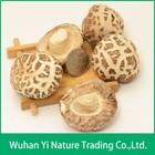 Dried Edible Shiitake Mushroom,Dried Flower Mushroom