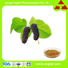 GMP factory supply high quality mulberry fruit 10%-25% anthocyanidins extract