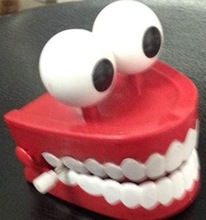 Hot sale human dental PVC tooth model with high quality