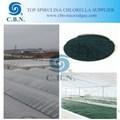 Natural spirulina / chlorella polvo de GMP fabricante