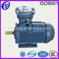 Explosão- prova de recurso de proteção de motores assíncronos de definição do motor elétrico
