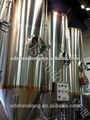 300l de acero inoxidable micro equipo de fábrica de cerveza, 300l bar pub y pequeño equipo de elaboración de la cerveza micro equipo de elaboración de la cerveza