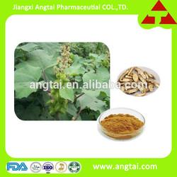 100% Notopterygium Root extract