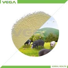 animal feed producers Bacillus Licheniformis/bacillus licheniformis clostridium butyricum feed premix