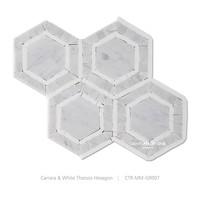 Carrara And White Thassos Marble Hexagon Mosaic Bathroom Floor Tile