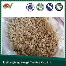 High Quality Organic Brown Rice
