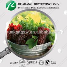 competitive price Grape Seed p.e.