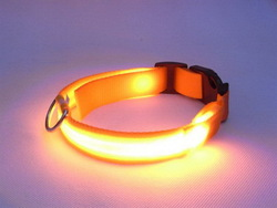 Best quality top sell led nylon pet dog collar and leash