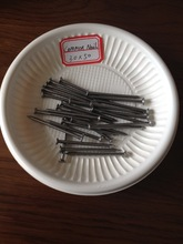 Common Nails Type And Low Carbon Material 2 Inch Common Wire Nails With Smooth Shank(supplier)