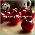 venda quente brancos enlatados cerejas