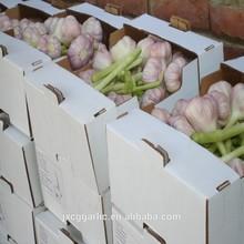 Fresh Chinese Natural Garlic Manufacture& Exporter& Distributor