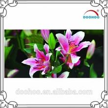 fancy cute custom design china 3D advertising lenticular picture