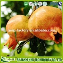 GMP standard China supplier 100% natural pomegranate peel extract / pomegranate peel p.e.
